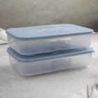 Набор контейнеров для яиц, 2 шт, 22,5×15×7,5 см, цвет МИКС - фото 489007