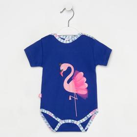 Боди для девочки, цвет синий/фламинго, рост 68 см