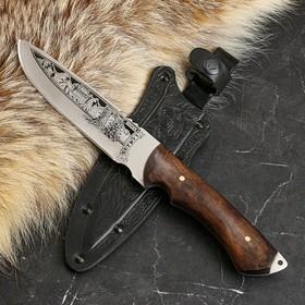 """Нож туристический """"Беркут"""" деревянная рукоять, сталь 40х13"""
