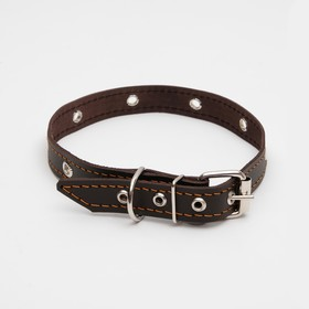 Leather dog collar single layer grooved grommets 50 x 2 cm, dimensionless, mix