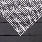 Плёнка полиэтиленовая, армированная, 2 × 10 м, толщина 200 мкм, белая