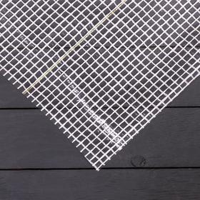 Плёнка полиэтиленовая, армированная, толщина 200 мкм, 2 × 10 м, белая