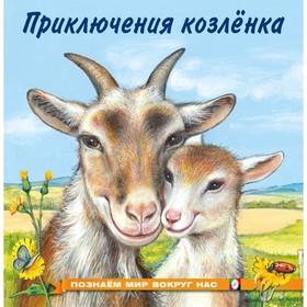 «Познаём мир вокруг нас. Приключения козлёнка», 16 стр.