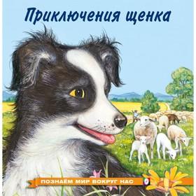 Познаём мир вокруг нас «Приключения щенка», 16 стр.