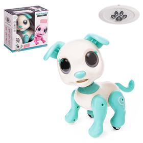 Робот-питомец радиоуправляемый «Собака», световые и звуковые эффекты