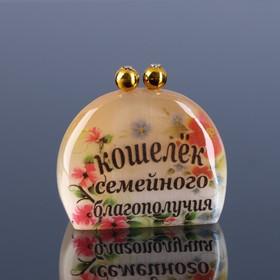 Сувенир «Кошелек семейного благополучия», 4 х4,5 см селенит