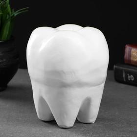 "Копилка ""Зуб"" белый, 13х14х19см"