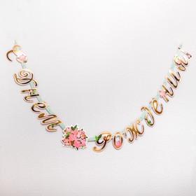 Гирлянда-буквы «Пионы», бумажная, 220 см