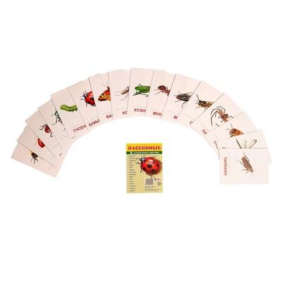 """Карточки обучающие """"Насекомые"""" 16 шт., 6,3 х 8,7 см"""