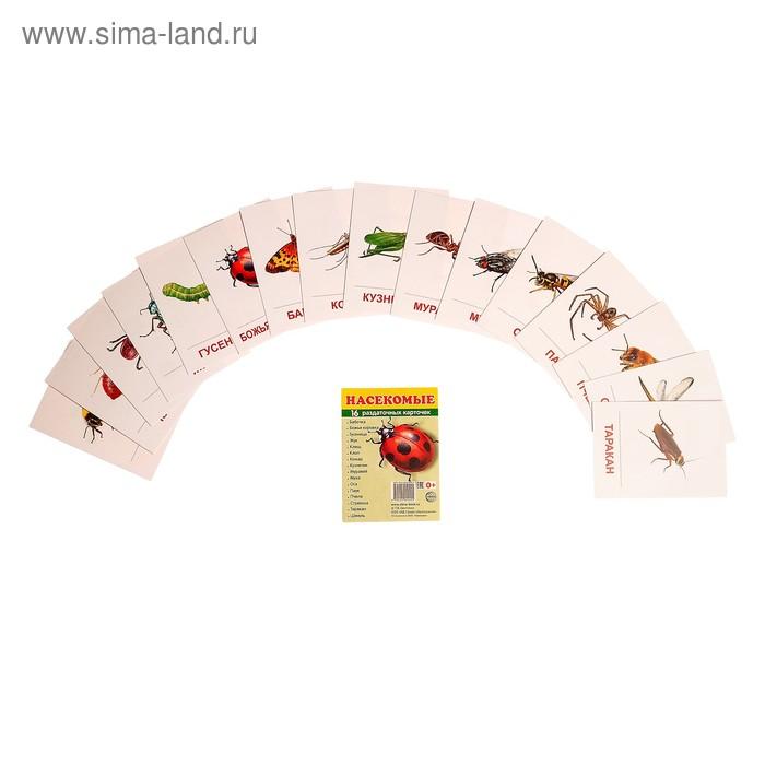 """Карточки обучающие """"Насекомые"""" 16 шт. 6,3 х 8,7 см."""