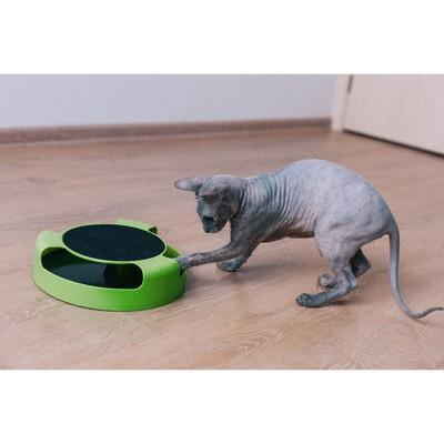 """Игровой комплекс для кошек """"Мышеловка"""""""