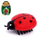 """Bug """"Insect"""", battery powered, MIX"""