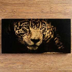 """Нарды """"Леопард"""" 48х24х4 см, d=2.5 см"""