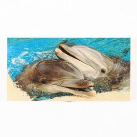"Нарды ""Дельфины"" 48х24х4 см, d=2.5 см"