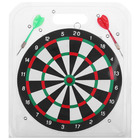 Darts (25 cm) blister + 2 dart