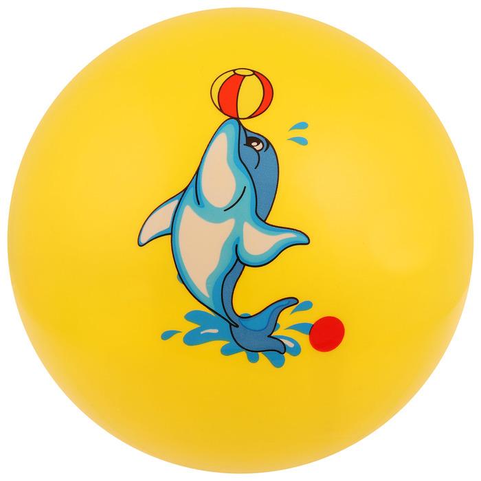 Мяч «Рыбка», с наклейкой, d=22 см, цвета МИКС