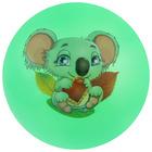 Мяч детский «Животные 1», с наклейкой, d=22 см, цвета МИКС