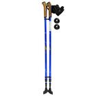 Палки для скандинавской ходьбы Ergo Nordic, Е-0673, алюминиевый сплав, амортизация, 110-140 см