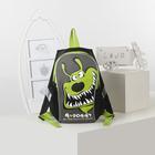 Рюкзак детский, отдел на молнии, цвет чёрный/салатовый