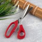 Ножницы закройные, скошенное лезвие, 21,5 см, цвет МИКС