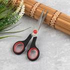 "Universal scissors 5.5"" 14cm blade length of 5.5 cm plastic ring SE"