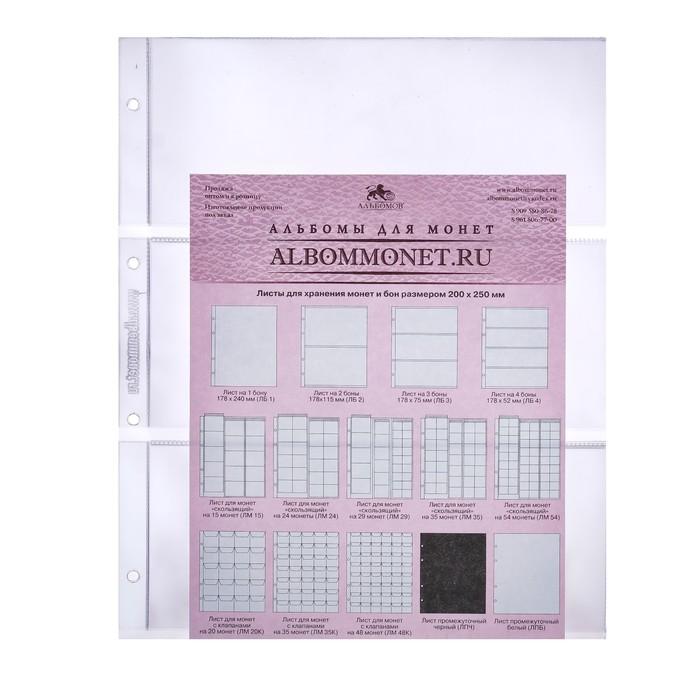 Лист Professional для хранения бон (банкнот) на 2 ячейки, формат Optima, размер 200х250 мм