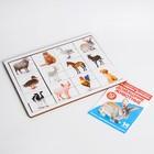 Головоломка. Рамка-вкладыш с Доманом «Домашние животные» (12 ЖИВОТНЫХ В ГОЛОВОЛОМКЕ, 14 ЖИВОТНЫХ В КНИГЕ) - фото 1029864