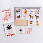 Головоломка. Рамка-вкладыш с Доманом «Домашние животные» (12 ЖИВОТНЫХ В ГОЛОВОЛОМКЕ, 14 ЖИВОТНЫХ В КНИГЕ) - фото 1029865
