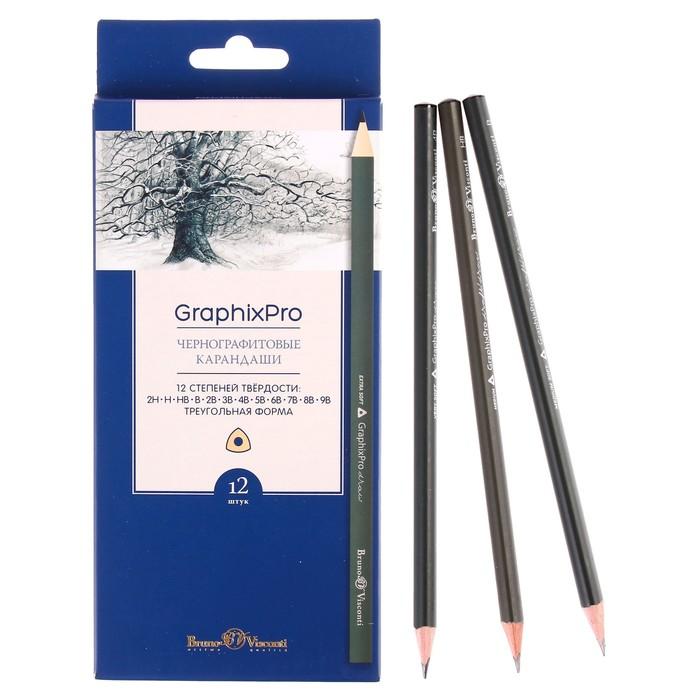 Набор карандашей чернографитных 3 мм разной твердости Graphixpro 12 штук, 2H-9B, трехгранные, в картонной коробке