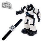 Робот интерактивный радиоуправляемый «Плуто», световые и звуковые эффекты, цвета МИКС