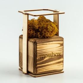 """ЭкоКуб  """"MossBox"""" Fire Yellow Cube мох стабилизированный"""