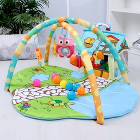 Развивающий коврик «Домик для игрушек», с дугами + шары, 930х700х470