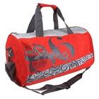 сумка спортивная S 46662 41*22*19 см 1 отд, дл ремень, 2 ручки