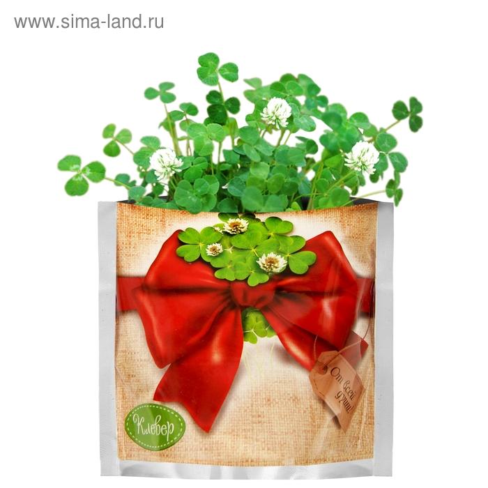 """Растущая трава """"Клевер"""", в подарочном пакете"""