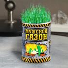 Мужской газон