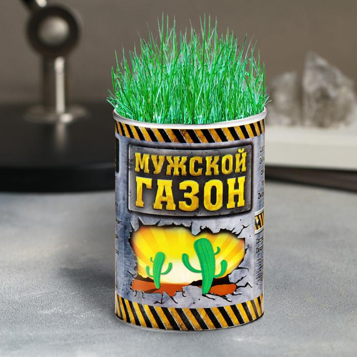 """Растущая трава в консервной банке """"Мужской газон"""", зеленая трава"""