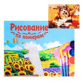 Картина по номерам на холсте, 40 × 50 см «Щенок в осеннем саду»