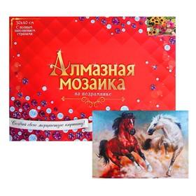 Алмазная мозаика с полным заполнением, 30 × 40 см «Две резвые лошади»