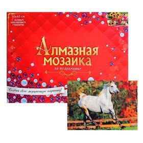 Алмазная мозаика с полным заполнением, 30 × 40 см «Скачущая лошадь»