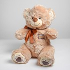 "Soft toy ""Bear with hearts on feet"" 50 cm, MIX color"