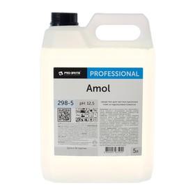 Моющее средство Amol, 5л Ош