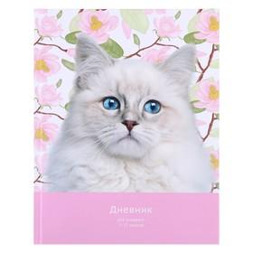 Дневник универсальный для 1-11 классов, «Кошечка в цветах», твёрдая обложка, матовая ламинация, 40 листов