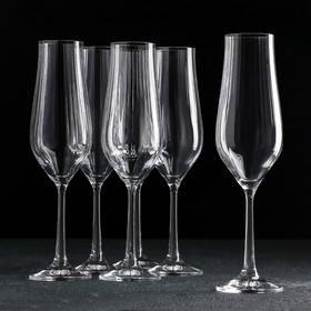 "Набор бокалов для шампанского 170 мл ""Тулипа"", 6 шт"