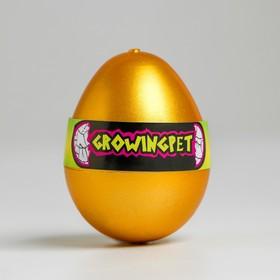 """Растущие животные """"Цыплёнок в яйце"""""""