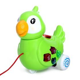 Развивающая игрушка «Попугай», световые и звуковые эффекты