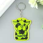 "Key chain plastic reflective ""Bull with a star of Joy"" MIX 6x5 cm"