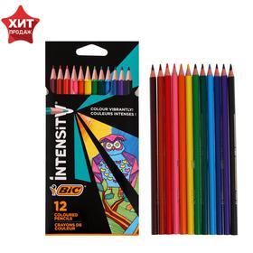 Цветные карандаши 12 цветов, для подростков и взрослых, трёхгранные, BIC Color Up