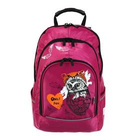 Рюкзак молодёжный, Luris «Спринт», 42 х 28 х 20 см, эргономичная спинка, для девочки «Сова»