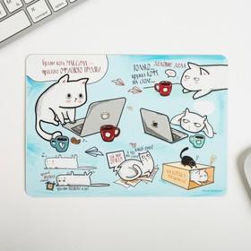 "Mouse pad ""Routine Kota Maxim"" 21 x14,8 cm"