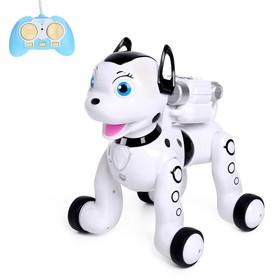 Животное радиоуправляемое «Робо-пёс», работает от аккумулятора